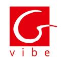 Gvibe (Fun Toys)